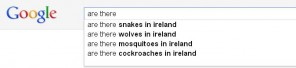 ....Google.ie reveals that Irish people are much more concerned about what's lurking in their own back gardens.