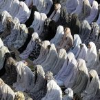 Female Iranian worshippers perform Eid al-Fitr prayer in Shahr-e-Ray, south of Tehran. (AP Photo/Vahid Salemi/PA)