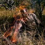 This controlled burning of the bush decreases the likelihood of serious fires in the dry season.