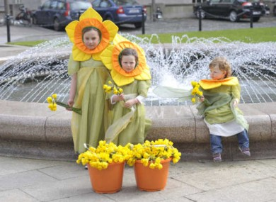 Isobel and Millie Ahearn and Orlaith Power help celebrate Daffodil Day in March for the Irish Cancer Society.