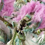 A performer from the Mangueira samba school parades during carnival celebrations at the Sambadrome in Rio de Janeiro, Brazil. (AP Photo/Hassan Ammar)