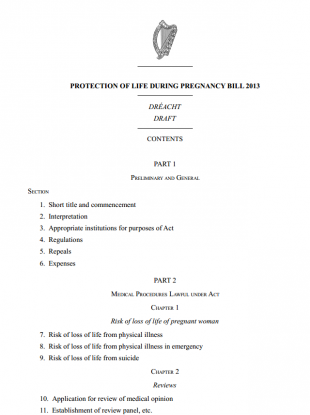 The frontpage of the Protection of Life during Pregnancy Bill 2013