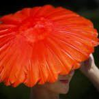 Hat designer Nikki Lewis wears one of her creations for Vivien Sherriff during day three of Glorious Goodwood at Goodwood Racecourse, Chichester. (PA)