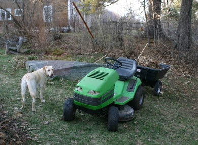 Not the lawnmower in question. (Also, the dog is innocent.)