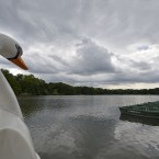 The swan neck of a pedal boat waiting for customers is seen at an empty lake under a cloudy sky in Gelsenkirchen, Germany.<span class=