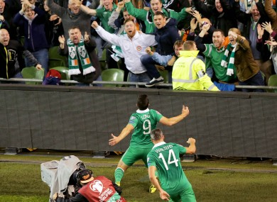 Shane Long celebrates his famous goal.