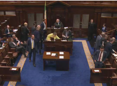 TDs voting in the Dáil this evening