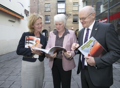 Dr Ann Eustace, Minister of State Catherine Byrne and HSE National Director Primary Care John Hennessy at today's launch of the report on Naxolone use.