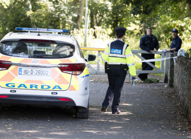 Gardaí at the scene of the discovery.
