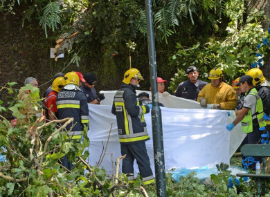 Rescuers work at the site where the tree fell