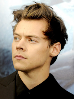 Fans 'disgusted' after singer Harry Styles was sexually