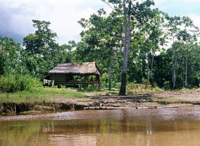 A hut on the Amazon River east of Iquitos.