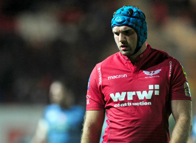 Tadhg Beirne has already sampled Ireland camp ahead of a likely debut after he departs Scarlets.