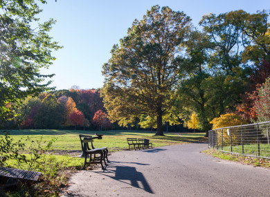 A stock photo of Brooklyn's Prospect Park.