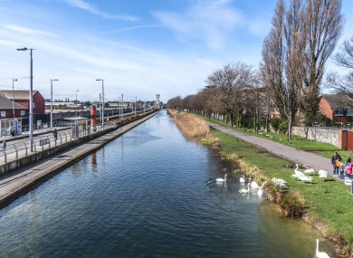 Looking down the Grand Canal from Drimnagh Luas stop.