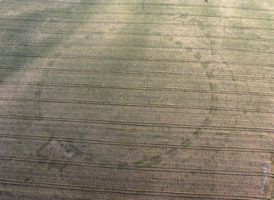 A large henge near Newgrange revealed during the dry weather.