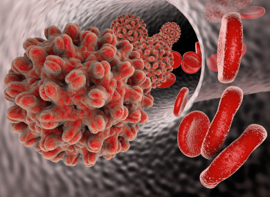 A model of the hepatitis virus
