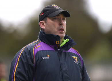 Eamonn Scallan is the new Wicklow senior hurling manager.