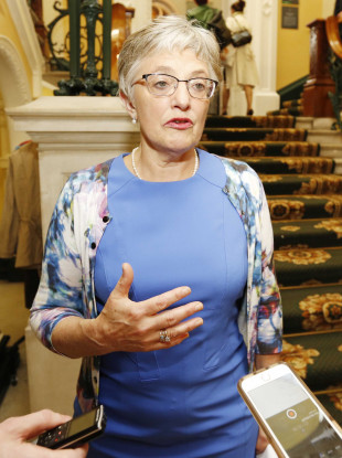 Minister Katherine Zappone told the Oireachtas about the alleged cases earlier this week.