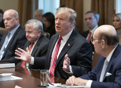 United States President Donald Trump participates in a Cabinet Meeting (file photo)