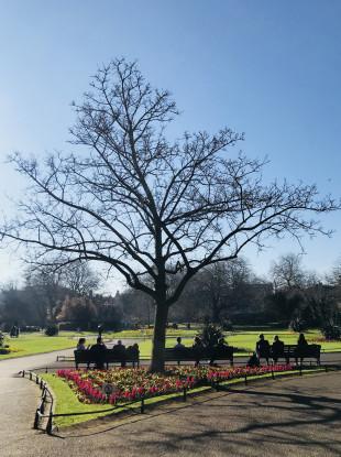 People sitting in Dublin's St Stephens Green enjoying spring sunshine.