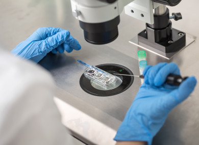 File image, a technician carrying out a control check of the in vitro fertilization process.
