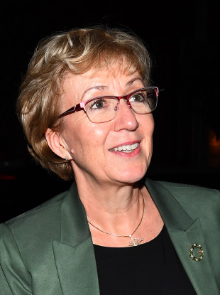 Former House of Commons leader Andrea Leadsom