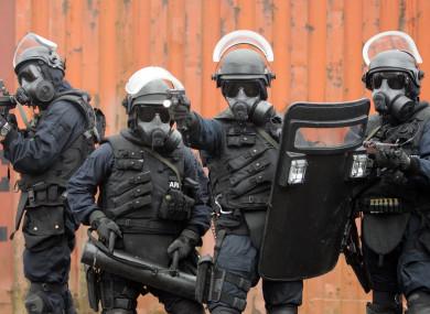 The Irish Army's elite Ranger Wing (file photo)