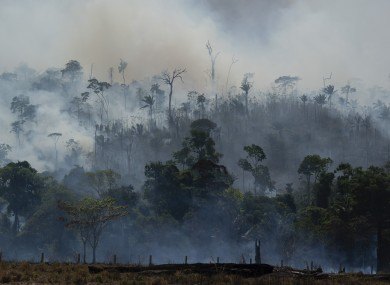 Fire consumes an area in Altamira, Brazil