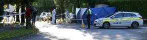 Man killed in overnight Dublin stabbing removed for post-mortem
