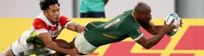 Rassie's Springboks power into semi-finals to end Brave Blossoms' World Cup