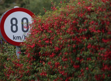 A national speed limit audit is near completion, according to the Department of Transport.
