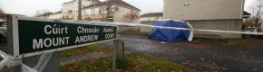 Three people arrested over death of man found in burning car in Lucan last month