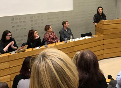 Advocates speak to politicians in Leinster House.