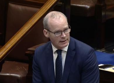 Simon Coveney in the Dáil today.