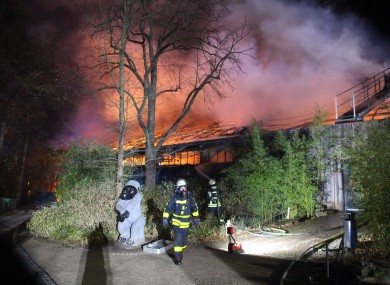 Firefighters stand in front of the burning monkey house at Krefeld Zoo, in Krefeld, Germany