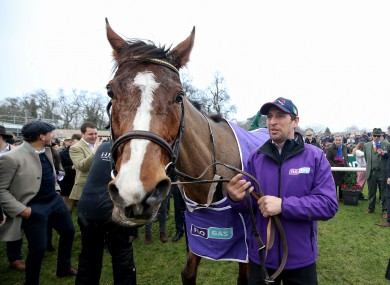 Faugheen after winning the The Flogas Novice Steeplechase