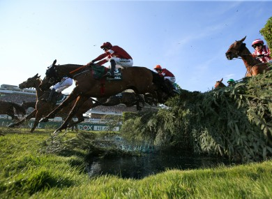 Tiger Roll: bidding for a third straight Grand National.