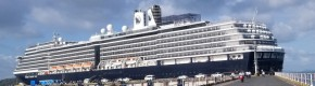 'Small number' of Irish people on two cruise ships where coronavirus detected, Coveney says