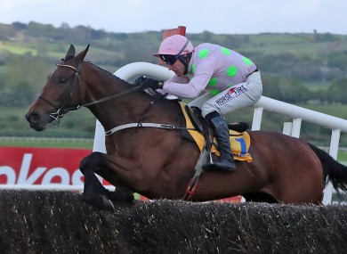 Chacun Pour Soi at last year's Punchestown Festival.