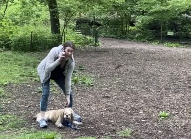 The video of a white woman, dubbed the Central Park Karen, calling 911 on a black man after he requested she leash her dog went viral earlier this week.