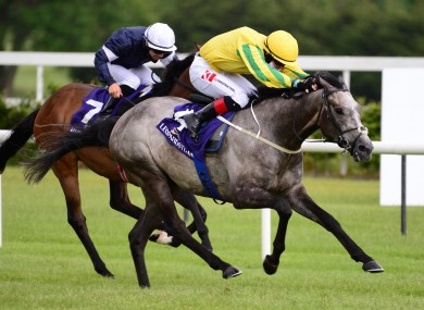 Nickajack Cave ridden by Colin Keane (right) wins the Saval Beg Levmoss Stakes at Leopardstown Racecourse.