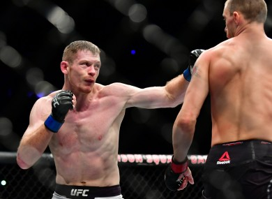 Joseph Duffy (left) will have his eighth outing under the UFC banner in Abu Dhabi next month.