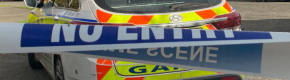 Bodies of a woman and two children discovered at Dublin home