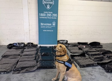 The herbal cannabis packages seized in Cork today with the help of detector dog Marley.
