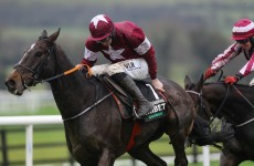 Back Abacadabras each-way to work his magic in the Punchestown Champion Hurdle
