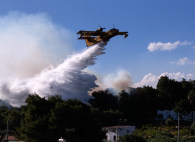 A firefighting aircraft works to put out a wildfire in Alepochori, Greece, yesterday