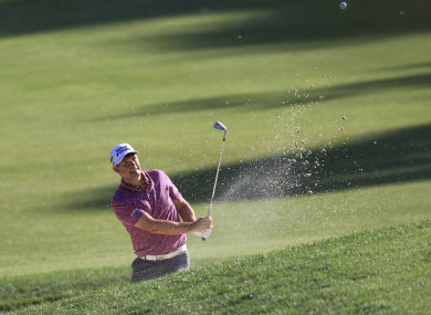 Harrington: missed out by a shot (file photo).