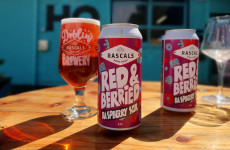 Bag some cans: Tasty new beers to experience this summer